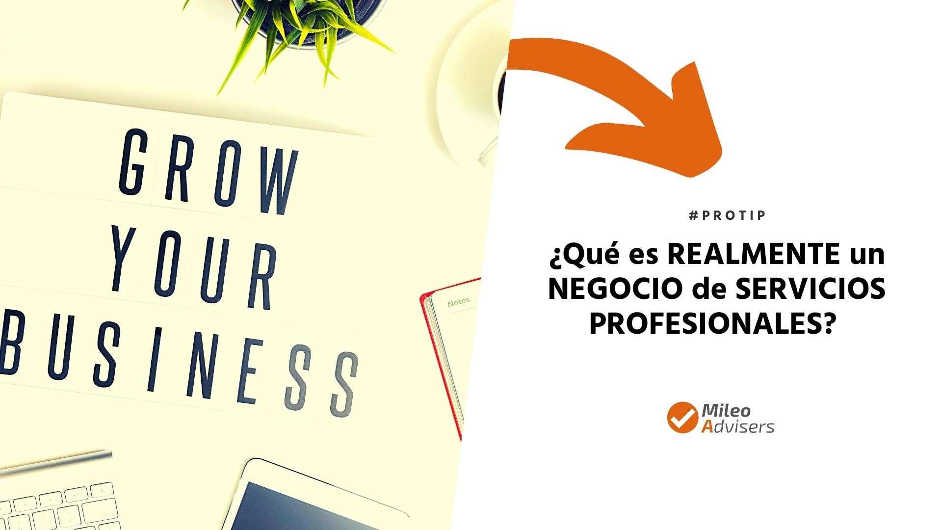 que-es-un-negocio-de-servicios-profesionales